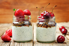 Chia seeds granola Greek yoghurt pudding with berries. Toning. selective focus Royalty Free Stock Photography