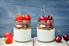 Chia seeds granola Greek yoghurt pudding with berries. Toning. selective focus Stock Photography