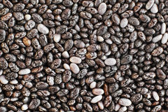 Chia seeds in high close up. Royalty Free Stock Photography