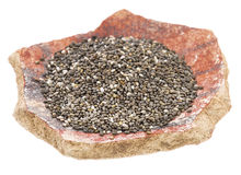 Chia seeds on a pottery shard Stock Photo
