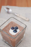 Chia Seeds Pudding Royalty Free Stock Images