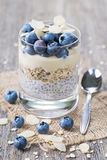 Chia seeds pudding Royalty Free Stock Photos