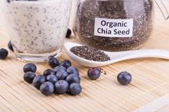 Chia seeds pudding with blueberry fruits, healthy nutritious ant. I-oxidant superfood, ideal for breakfast royalty free stock photo