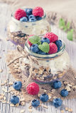 Chia seeds pudding Stock Images