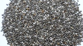 Chia seeds rotating on white background. stock video footage