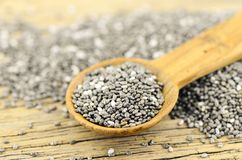Chia seeds useful for digestive system. Stock Photos
