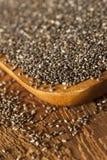 Chia Seeds seco orgánico Fotografía de archivo libre de regalías