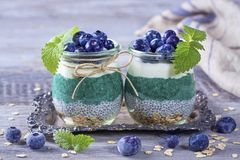 Chia seeds with spirulina pudding royalty free stock images