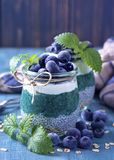 Chia seeds with spirulina pudding. With blueberries stock photo