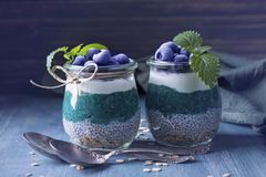 Chia seeds with spirulina pudding. With blueberries stock photography