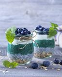 Chia seeds with spirulina pudding. With blueberries royalty free stock photos