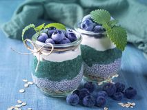 Chia seeds with spirulina pudding. With blueberries royalty free stock photo
