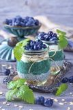 Chia seeds with spirulina pudding stock image