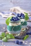 Chia seeds with spirulina pudding. With blueberries royalty free stock photography