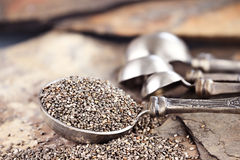 Chia Seeds. Tablespoon of healthy chia seeds with selective focus and extreme shallow depth of field Stock Image
