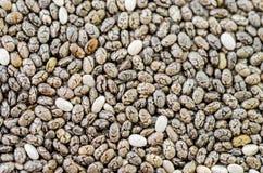 Chia seeds texture. Royalty Free Stock Photos