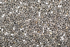 Chia Seeds Texture Stock Photography
