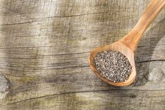 Chia seeds on the wooden table - Salvia hispanica. Chia seeds in the wooden spoon - Salvia hispanica royalty free stock images