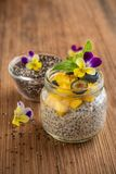 Chia seeds and yogurt pudding Royalty Free Stock Images