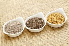 Chia y semilla de lino Imagen de archivo