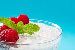 Chia yoghurt med hallon arkivbilder