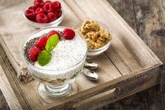 Chia yoghurt med hallon royaltyfri foto