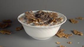 Chia ziarna wolno spadają w białego talerz wypełniającego z oatmeal z mlekiem zdjęcie wideo