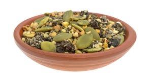 Chiaamerikaanse veenbes en het ontbijtgraangewas van pompoenzaden in kleikom royalty-vrije stock afbeelding