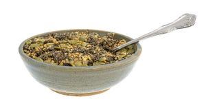 Chiaamerikaanse veenbes en het ontbijtgraangewas van pompoenzaden in kom Stock Foto's