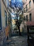 Chiado grannskap i Lissabon, Portugal royaltyfri foto