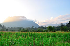 Chiang Dao mountain Royalty Free Stock Photo