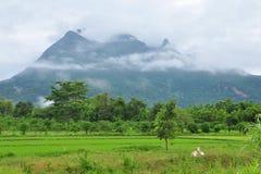 Chiang Mai多山省 库存照片