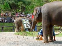 CHIANG MAI, ΤΑΪΛΆΝΔΗ _ ΣΤΙΣ 6 ΜΑΐΟΥ 2017: Η ζωγραφική ελεφάντων παρουσιάζει στο στρατόπεδο ελεφάντων Maesa, mai Chiang, Ταϊλάνδη Στοκ Φωτογραφία