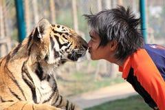 chiang mai Ταϊλάνδη τίγρη Στοκ Εικόνα