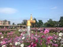 chiang mai Zdjęcie Stock