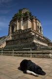 Chiang Mai Imagen de archivo