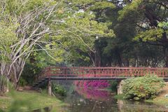 Chiang Mai Lizenzfreie Stockbilder