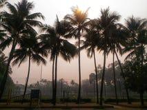 Chiang Mai Air Quality Index ( AQI) ist jetzt für empfindliche Gruppen ungesund stockbilder