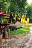 Chiang Mai buddisttempel - Wat Phan Tao Royaltyfri Fotografi