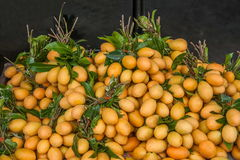 Chiang Mai, de oude stad van Thailand - de kleine markt van het mangofruit Royalty-vrije Stock Foto's