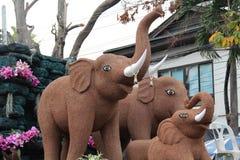 Chiang Mai Flower Festival 2015 Fotografía de archivo
