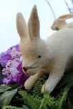 Chiang Mai Flower Festival 2015 Fotografía de archivo libre de regalías