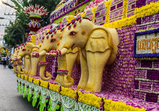 Chiang Mai Flower Festival 2016. CHIANGMAI THAILAND FEBUARY 6:Chiangmai Flower festival 2016 to showcase its beautiful flowers and decorative plants on Febuary Royalty Free Stock Photo
