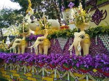 Chiang Mai Flower Festival Thailand Stock Photography