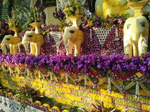 Chiang Mai Flower Festival Thailand Stock Photos