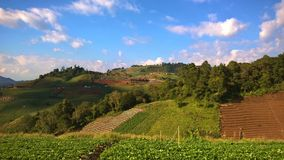 Chiang Mai góry i piękna linia horyzontu Zdjęcie Royalty Free