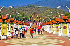 Chiang Mai Garden. 1/1/2010 Thai royal flora festival grand opening in Chiangmai, Thailand Stock Image