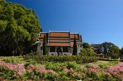 Chiang Mai lopp royaltyfri fotografi