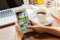 CHIANG MAI, TAILANDIA - 9 DE MAYO DE 2016: Uso más de Airbnb del iPhone 6 de Apple que muestra en la pantalla Airbnb es un sitio  Imagen de archivo libre de regalías