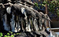 Chiang Mai, Tailandia: Elefantes de Chedi en Wat Chiang Mun Imagen de archivo